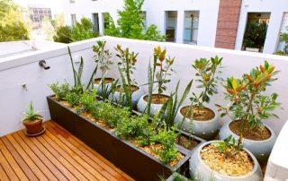 Couvertine pour toit plat